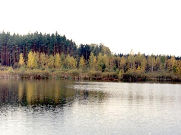 знакомства суджа курской области